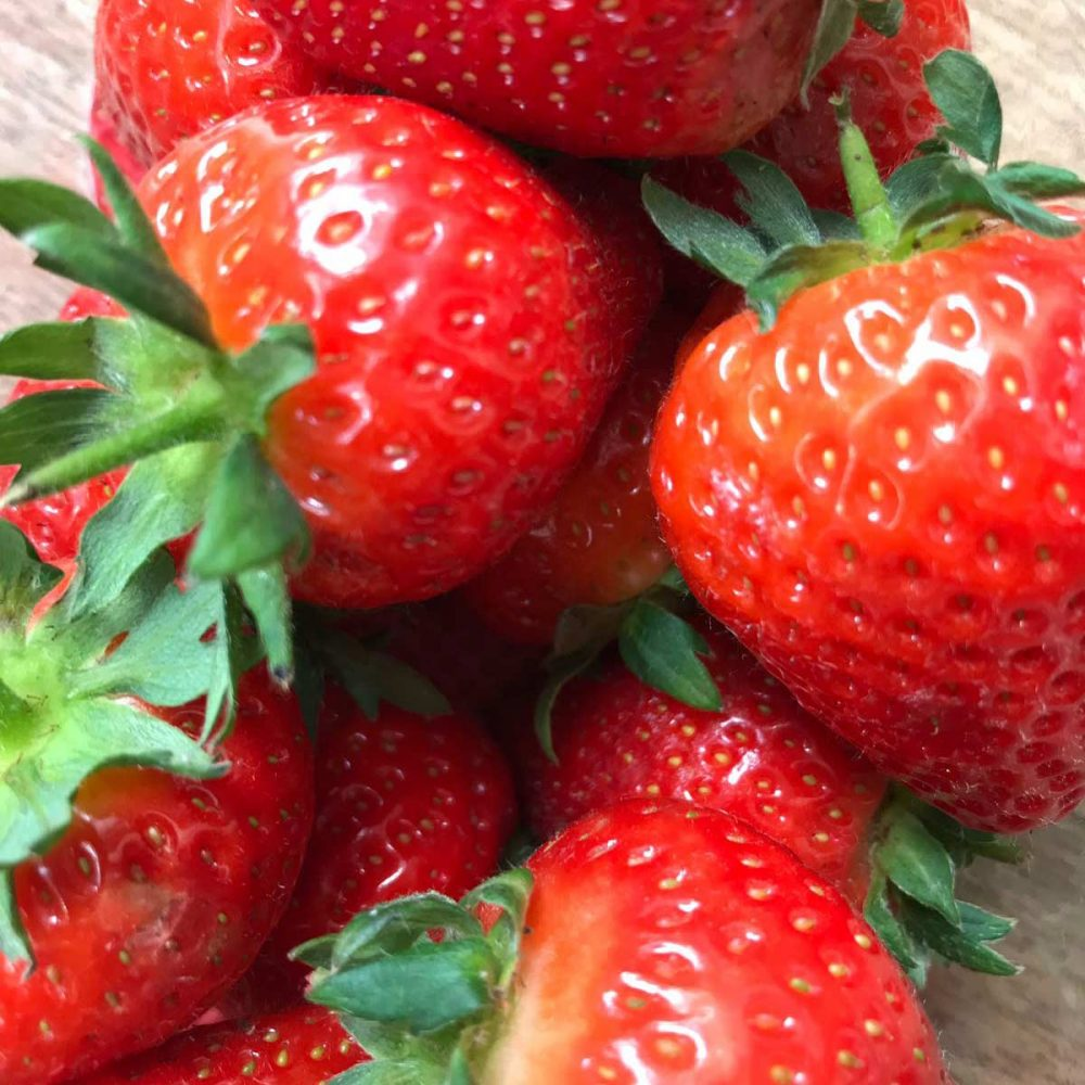Fresh juicy local strawberries at The Creaky Shed