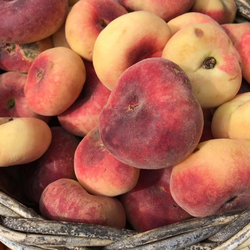 Juicy fresh nectarines at The Creaky Shed